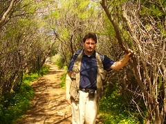 On the trail at the Ghadira nature reserve...Chamaeleon paradise! (sam2cents) Tags: me wildlife malta scientist naturalist ghadira sam2cents ghadiranaturereserve birdlifemaltanature