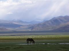 Tibet (craigkass) Tags: tibet himalaya ctrippic