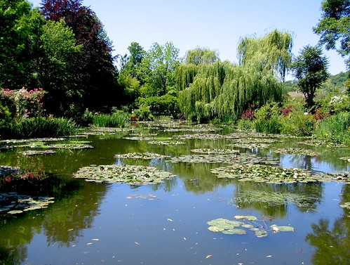 Monet's Pond II