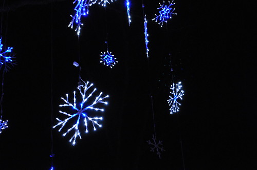 snowflakes at Brookside Garden of Lights