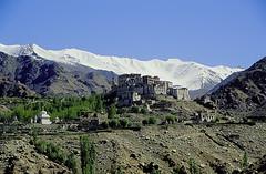 Ladakh - Likir Monastery (CortoMaltese_1999) Tags: india monastery himalaya indien himalayas ladakh likir monastery likir