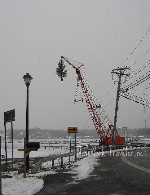 Crane Tree