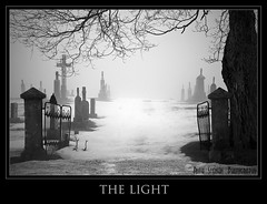 The Light (Cottage Gal ==> ruthstensonphotography.com) Tags: light bw mist ontario canada love monument grave fog death bravo gate peace cemetary warmth mysterious mapletree kindness bec irongate themoulinrouge blueribbonwinner supershot passionphotography mywinners nikond80 photology theexhibit impressedbeauty amazingshots superbmasterpiece diamondclassphotographer flickrdiamond megashot ysplix amazingamateur focuslegacy theunforgettablepictures theunforgettablepicture artlegacy betterthangood bwartaward theroadtoheaven exquisiteimage distinguishedpictures llovemypic multimegashot stealingshadows
