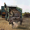 39 Bob releases Theo the teen raged Triceratops