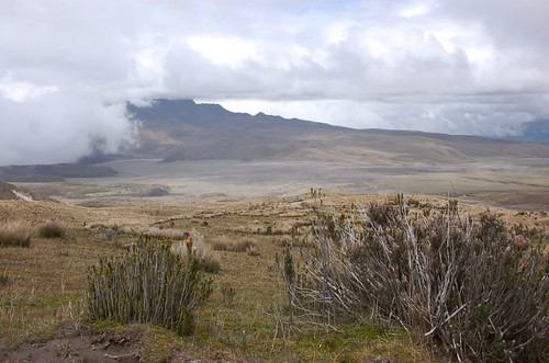 Desertscape at the base of Cotopaxi