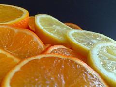Oranges and Lemons (Weeping-Willow Photography) Tags: cameraphone orange fruits fruit lemon lemons citrus oranges 08 orangesandlemons nokian95 photofaceoffwinner pfogold photofaceoffgoldmedalwinner project3662008 february08