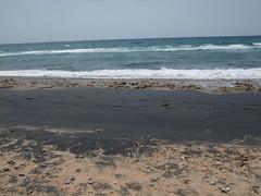 Berbera Beach (Yusuf Dahir's Somaliland Photos) Tags: from fresh somaliland