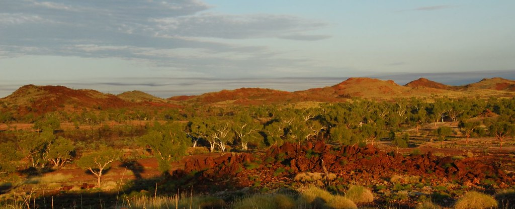 Early Morning In Outback Western Australia