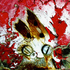 The rabid rooster (daliborlev) Tags: abstract texture metal square eyes rust urbandecay rusty scratches brno bolt bolts scratched mundanedetail 500x500 vividcolours haphazartsquare