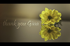 Thank You Gina! It's been fun! (sharaff) Tags: flowers friends light music brown white black flower color male green art love me nature beauty yellow photoshop fun google aperture nikon flickr you bokeh gorgeous gina adobe f3 extension nikkor maldives vignette trapani lightroom lifehacker d300 105mm shoken iso250 hbw sharaf firerfox betterflickr sharaff thankyougina