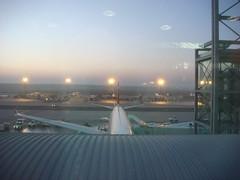 nwa A330-300 at Frankfurt