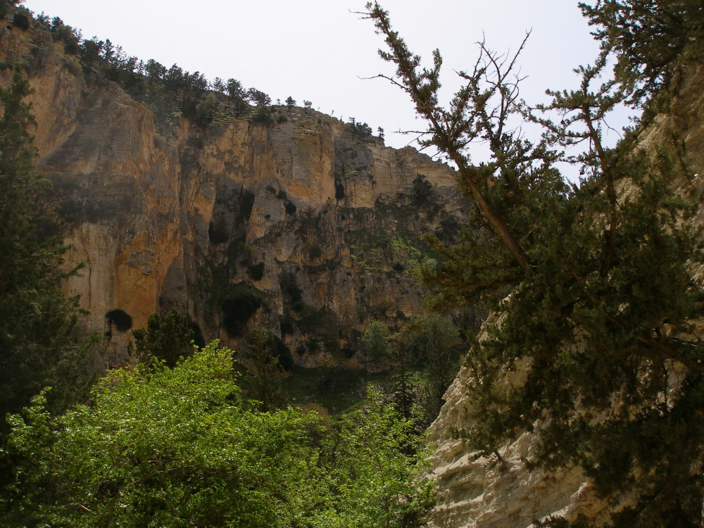 Avakas gorge wide