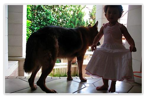 http://farm3.static.flickr.com/2362/2526780111_65d922377b.jpg