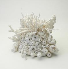 Bleached Coral Garden (gooseflesh) Tags: sculpture art coral garden paper crochet yarn bleached helle jorgensen