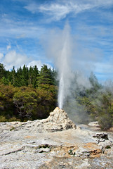 Lady Knox Geyser (Singing With Light) Tags: newzealand green rotorua pentax nz geyser kiwi waiotapu ladyknox jjp k200d jjpk200dpentax