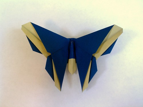 The Baxter (Butterfly)