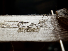 Il filo della memoria (Topyti) Tags: sardegna gold sardinia seta oro santantioco pinnanobilis bisso chiaravigo occhitroppotroppostellatiringraziano