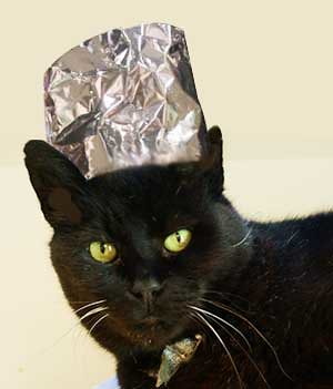 cat-with-tin-foil-hat by jeffhall2069, on Flickr
