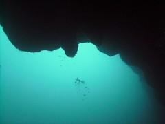 PICT0025 (JoseQ) Tags: blue mar hole great tiburones buceo caribe submarinismo tiburón