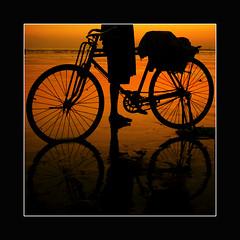 the biker (!!sahrizvi!!) Tags: pakistan sunset reflection net feet beach nature water beautiful bike bicycle wheel silhouette fishing fisherman sand shadows fishermen outdoor dusk wheels chain ruleofthirds sahrizvi sarizvi aplusphoto