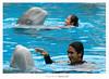 Dolfin ,, (Nasser Bouhadoud) Tags: park trip blue man water pool swimming canon thailand eos 350d women bangkok center 2006 safari mm 300 75 pure f4 56 dolfin saher ناصر بانكوك allil تايلاند lllusm بوحدود