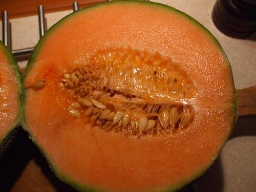Meloen (algemeen)