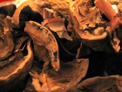 Once Nuts (Conanil) Tags: shells dinner walnut diner het newyearseve van 2008 cena jantar capodanno driedfruit abendessen coquilles nozes cenone noix nueces noci dner walnsse escudos fruitssecs fruttasecca gusci cscaras vooravond okkernoten vsperadelaonuevo nieuwejaar oberteile vorabenddesneuenjahres frutasecada laveillenouvelleanne evedeanonovo droogfruit drrobst