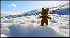 Orsetto (CarloAlessioCozzolino) Tags: sardegna sky white snow branco frost sardinia teddy cielo neve bianco frio urso espuma orsetto fonni bruncuspina mywinners abigfave theperfectphotographer orsettoeconiglietta