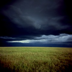 heavy savannah sky (czuczy) Tags: green grey holga kenya savannah heavysky masaimara may2007