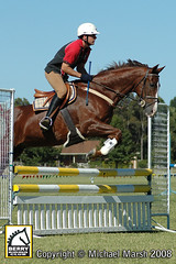 30th-March-157 (michael_marsh_photos) Tags: horse equine showjumping showjump jumpclub berryridingclub michaelmarsh michaelmarshphotos