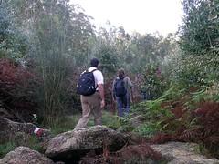 200607sendero215 (Fotos da Web-IES Manuel Antonio) Tags: senderismo sendero facho ofacho elfacho