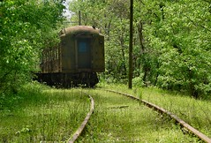 """Long Black Train"" (cindy47452) Tags: old abandoned train perfect photographer decay indiana creativecommons 100views 400views 300views 200views boxcar 500views orangecounty trainyard 800views 600views 700views the frenchlick 900views p173 worldwideopen frenchlickrailwaymuseum railvignettes"