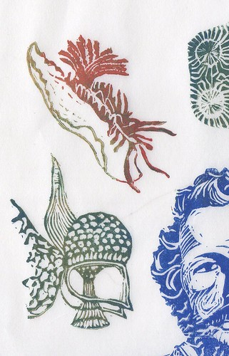 Haeckel detail