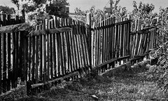 (eelend) Tags: original sunlight white film fence shadows blancinegre bulgary svishtov blakc odyssey2007