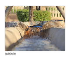 Irrigation (Za3tOoOr!) Tags: traditional u
