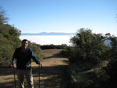 IMG_0016 (Monte Sereno, California, United States) Photo