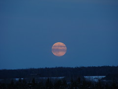 Lune de Novembre (1) (daisy_eve) Tags: canada lune novembre quebec sony cybershot ciel paysage crépuscule 2007 estrie asbestos h9 dsch9