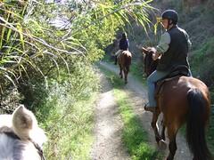 DSCF0701 (geeplums) Tags: rancho 2007 ferrer