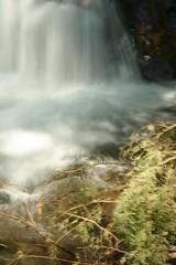 cascada (Analía Acerbo Arte) Tags: naturaleza agua bariloche cascada caida