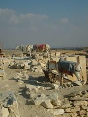 Egypt, Day 1, Sakkara (8)