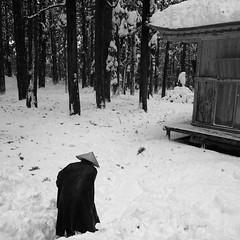 雪掻き (Riki@Tokyo) Tags: bw snap 雪 冬 雪景色 白山神社 grd2 平泉寺 雪掻き 平泉寺白山神社