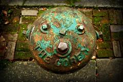 The Corey (sonek321) Tags: seattle hydrant corey capitolhill aficionados pentaxk10d