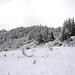 Eugene Hills