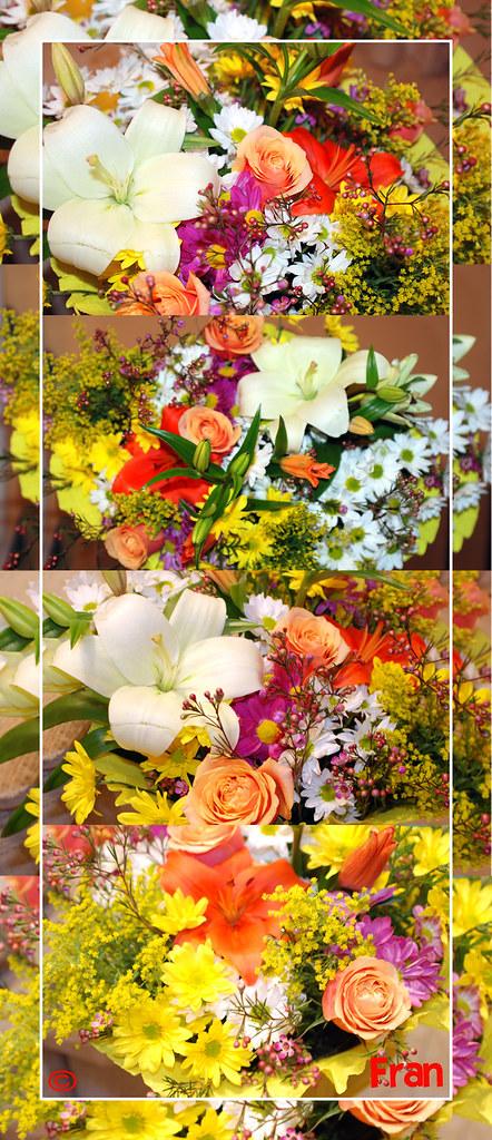 Flores Vertical