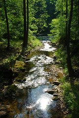 travel sun sunlight mountain west reflection water creek river virginia photo stream roadtrip motorcycle sunlit travellog memorialday travelogue motorcycletouring sporttouring virginiad80 dclow