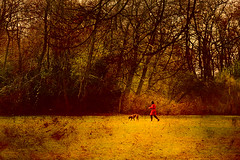 Lady in red (Philipp Klinger Photography) Tags: park trees red dog texture lady spring nikon creative meadow commons jacket nikkor philipp d300 klinger 1685 dcdead