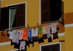per quanto a volte mi sembra di guardare il mondo a testa in giù..... ()Butterfly() Tags: orange yellow giallo colori arancione bucato atestaingiù pannialsole