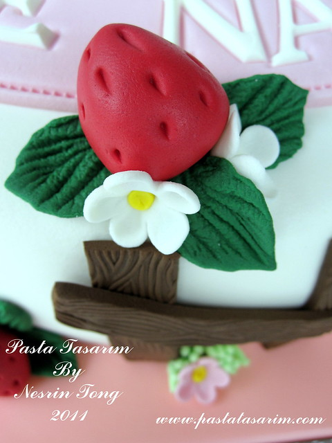 STRAWBERRY SHORTCAKE - AYSE NAZLI BIRTHDAY