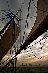 Sails & Skyline