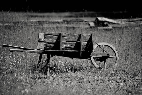 Old fashioned wheelbarrow